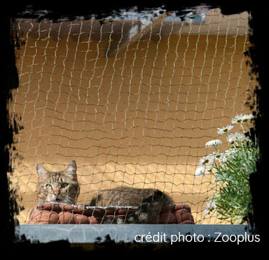 filet de protection pour chat zooplus